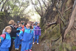 Caminata5ºy6ºPrimaria-23